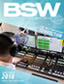 BSW Flyer